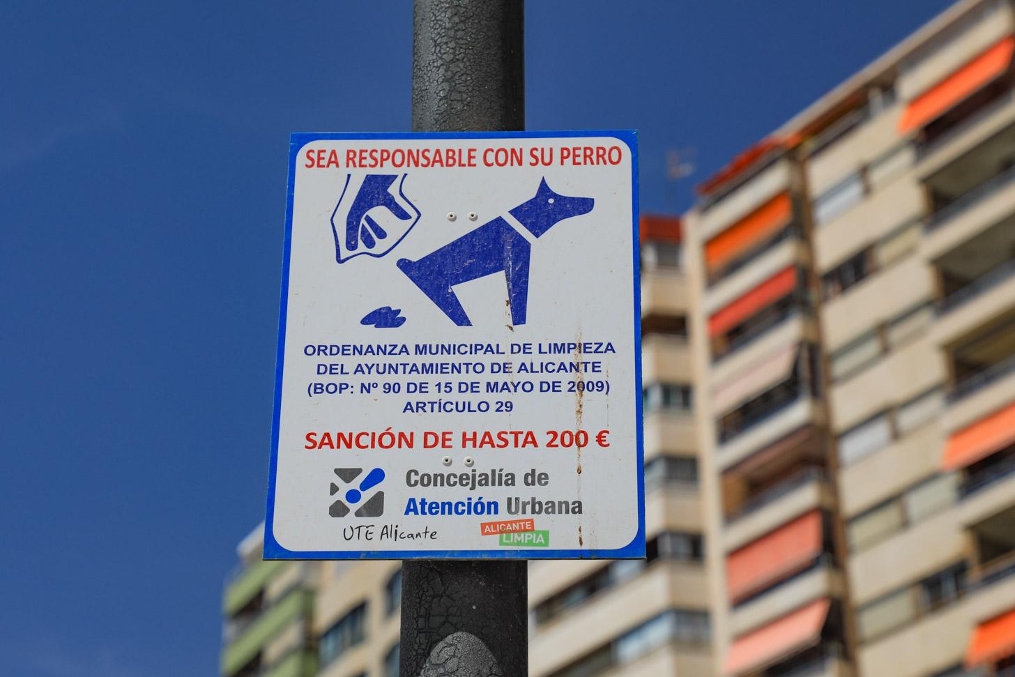 De hond mee naar Alicante?